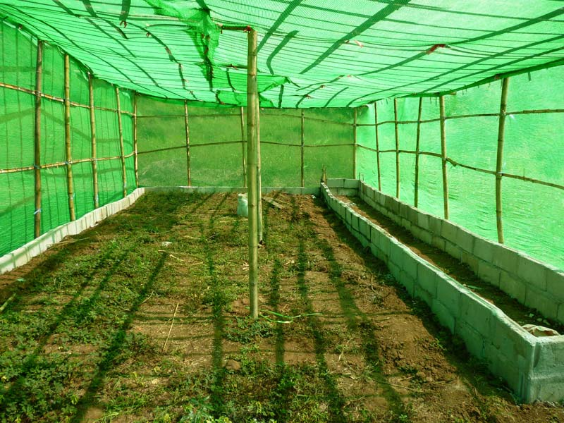 green net manufacturer